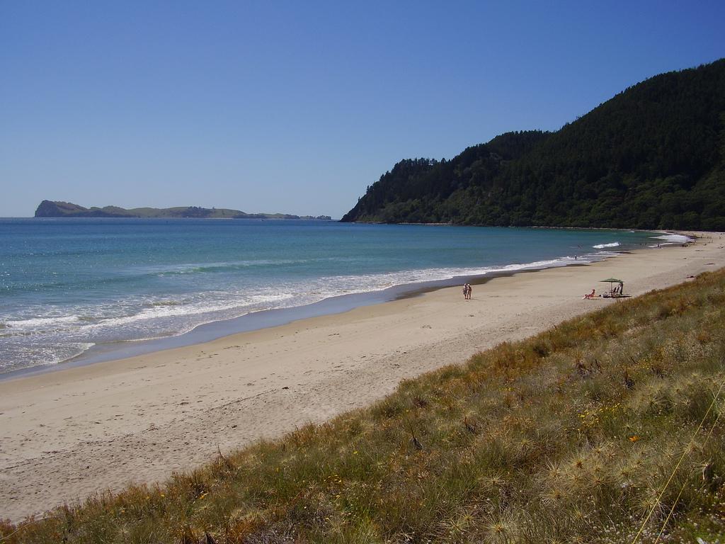 Пляж Пауануи в Новой Зеландии, фото 5