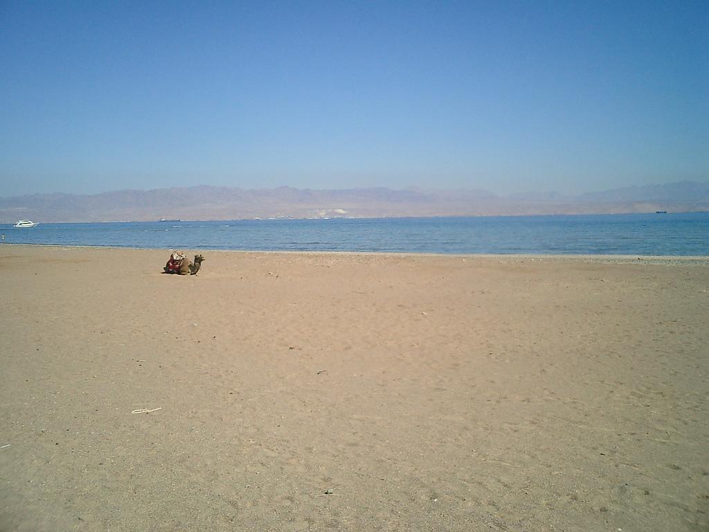 Пляж Таба в Египете, фото 3