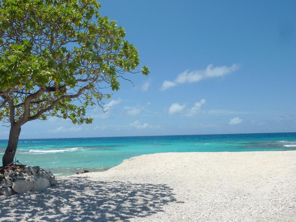 Пляж Атолл Рангироа во Французской Полинезии, фото 6