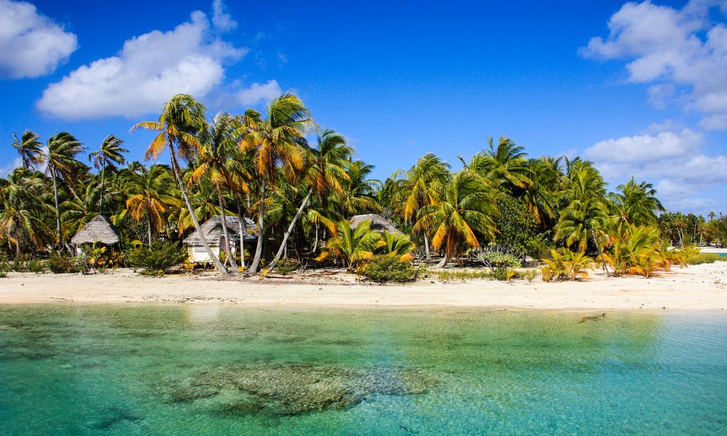 Пляж Атолл Рангироа во Французской Полинезии, фото 8