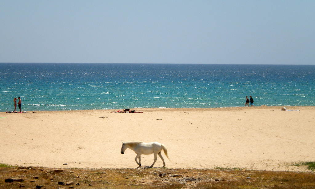 Пляж Болония в Испании, фото 2
