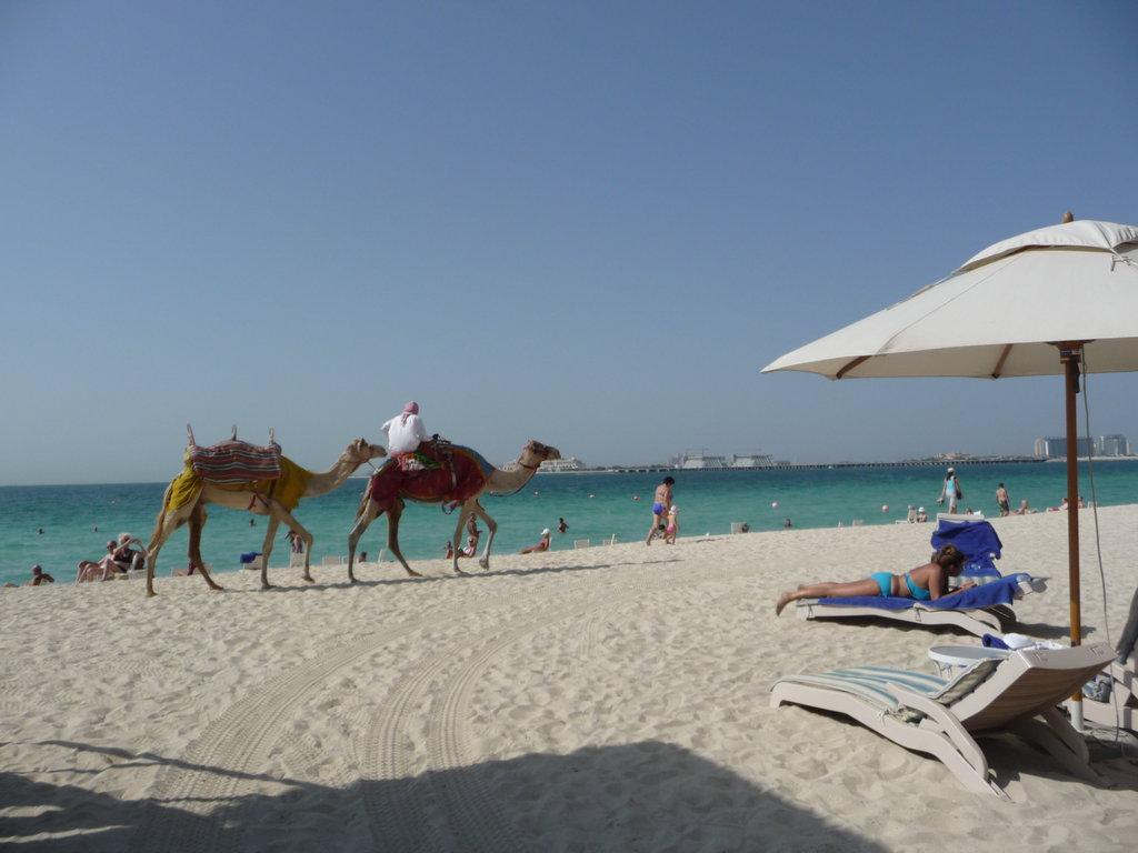 Пляж Джумейра в ОАЭ, фото 10