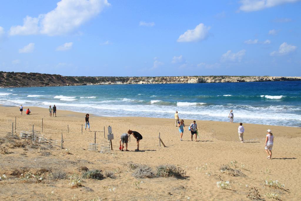 Пляж Лара на Кипре, фото 1