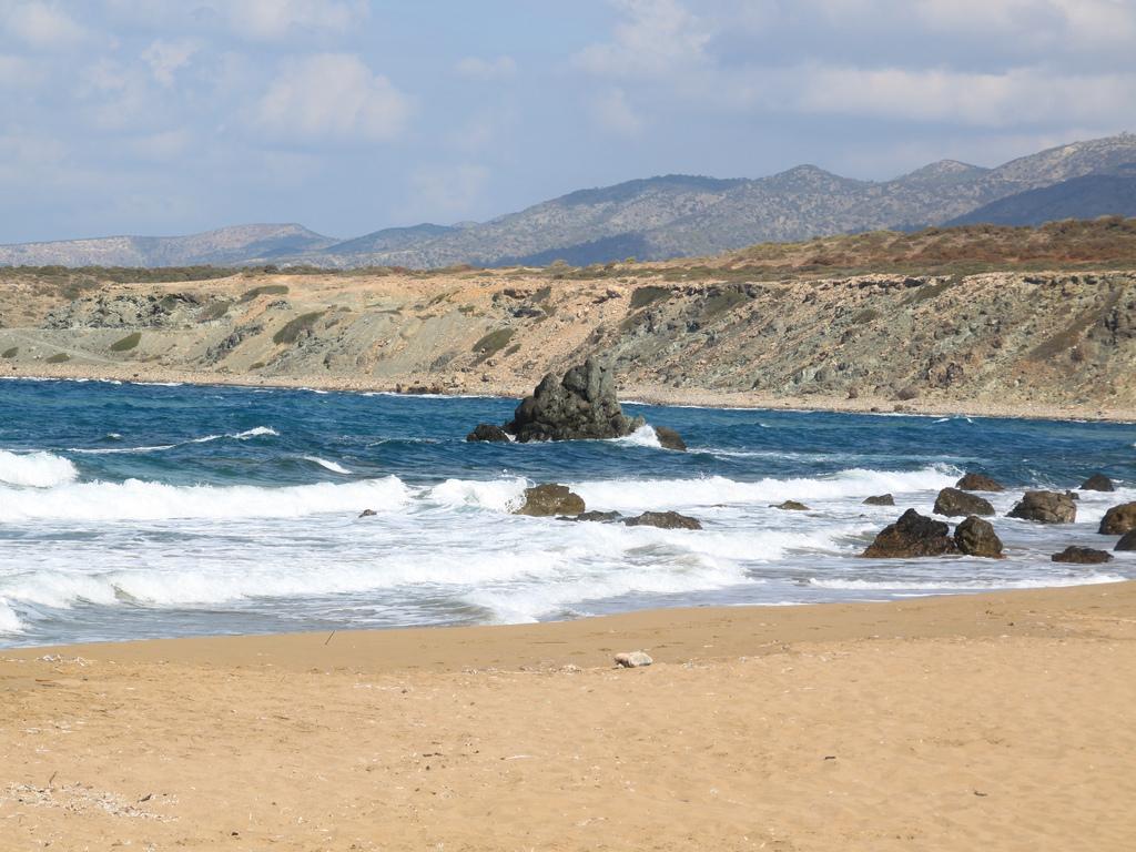 Пляж Лара на Кипре, фото 2