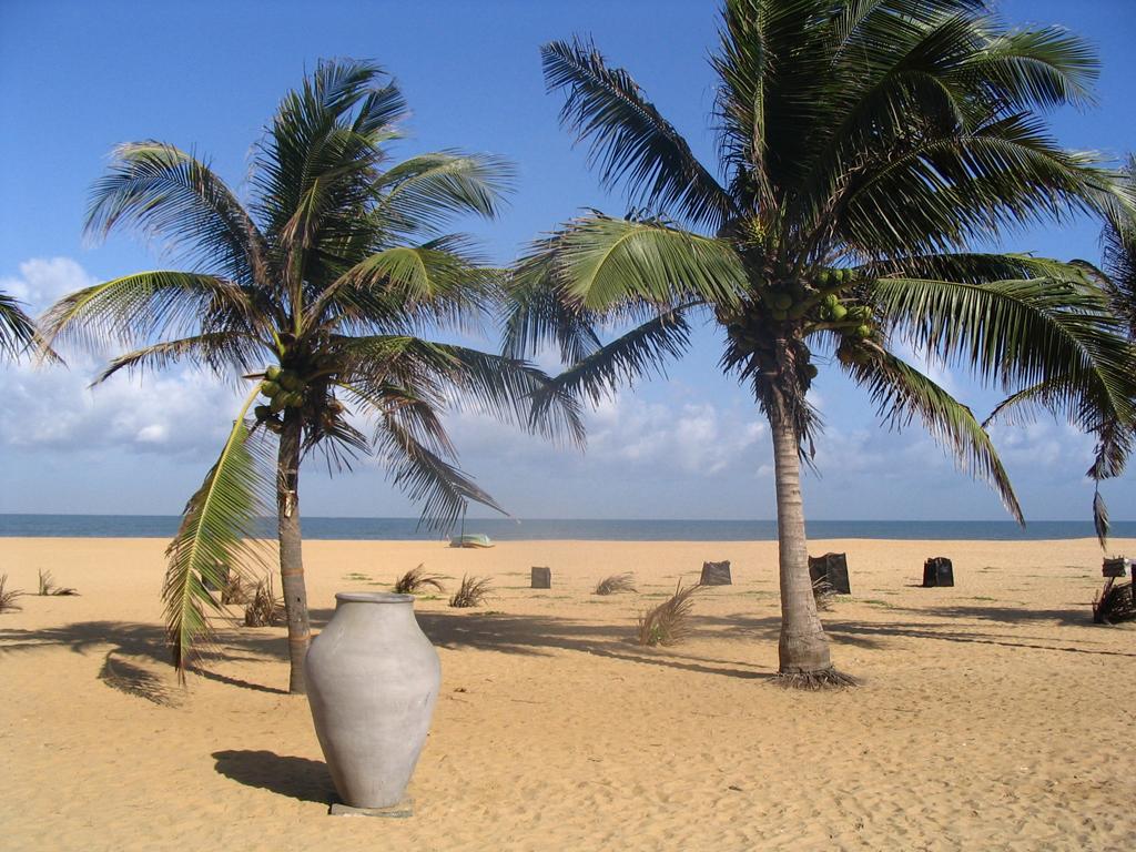 Пляж Негомбо Ко в Шри-Ланке, фото 7