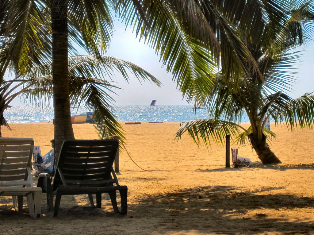 Пляж Негомбо Ко в Шри-Ланке, фото 12