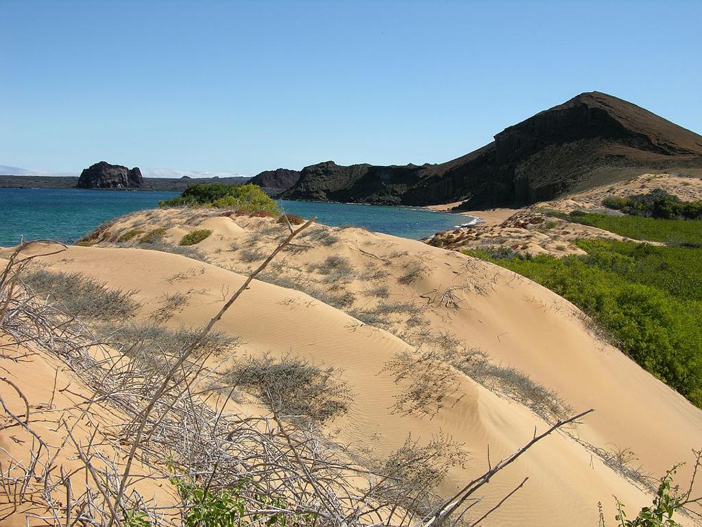 Пляж острова Бартоломе в Эквадоре, фото 5