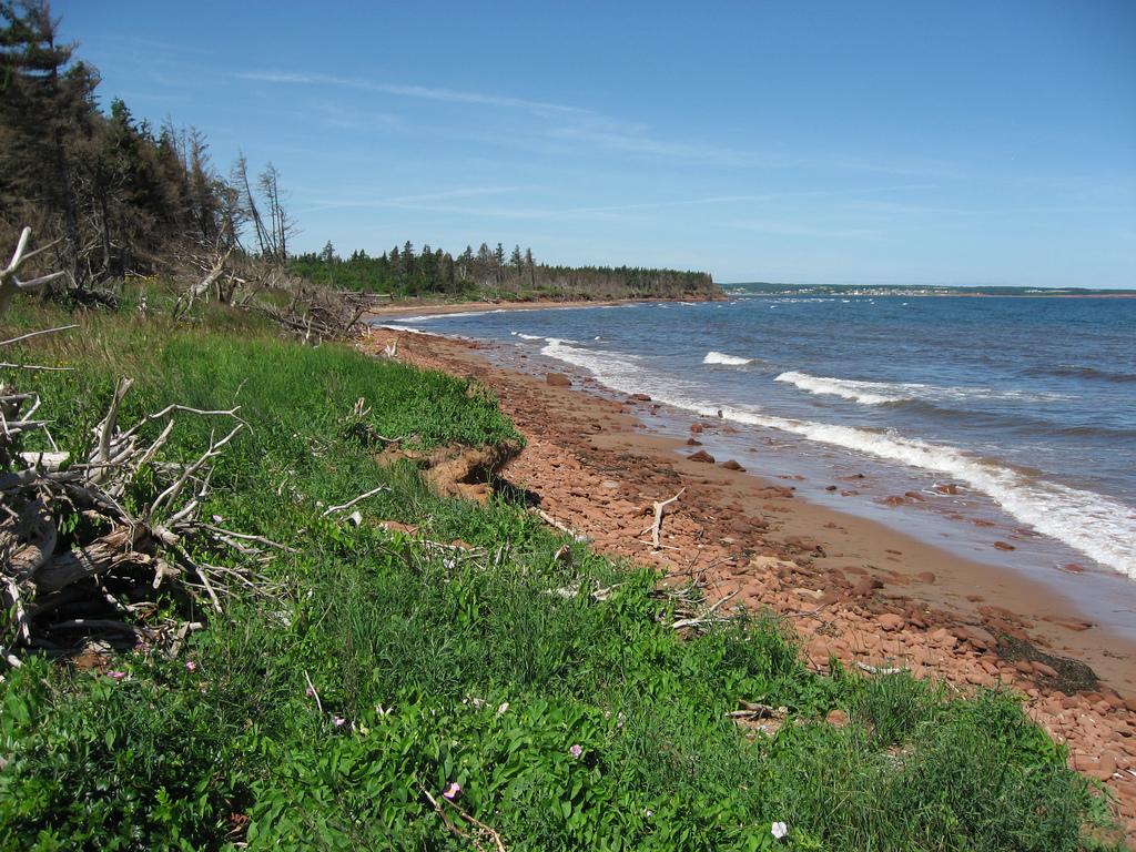 Пляж острова Принц Эдуард в Канаде, фото 1