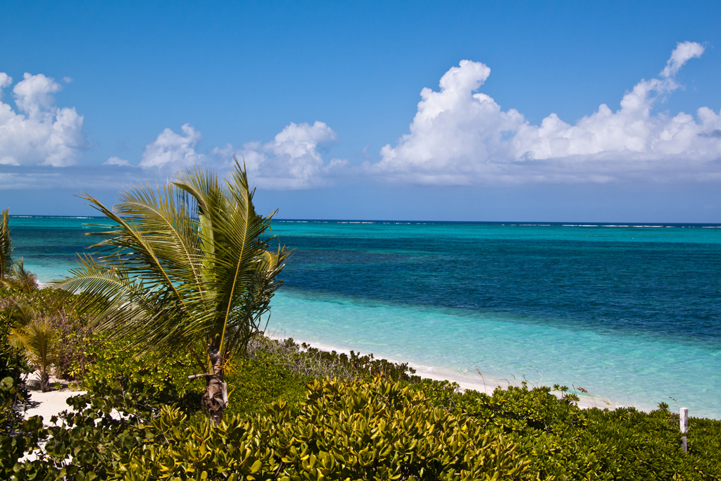 Пляж острова Провиденсиалес на Карибских островах, фото 4