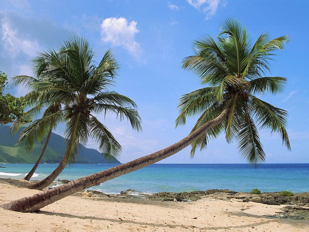 Пляж острова Сент-Крой на Американских Виргинских островах, фото 1