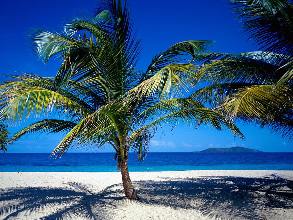 Пляж острова Сент-Крой на Американских Виргинских островах, фото 3