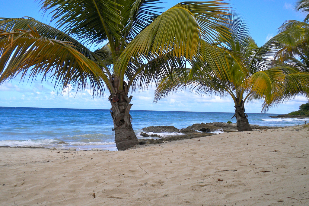 Пляж острова Сент-Крой на Американских Виргинских островах, фото 6