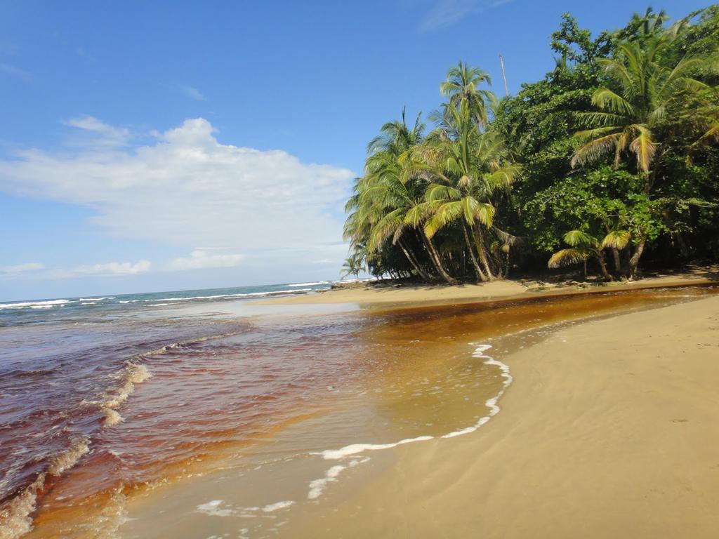 Пляж Пуэрто-Вьехо в Коста-Рике, фото 9