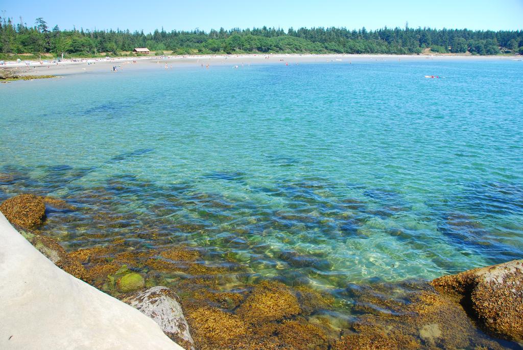 Пляж Трибьюн Бей в Канаде, фото 3