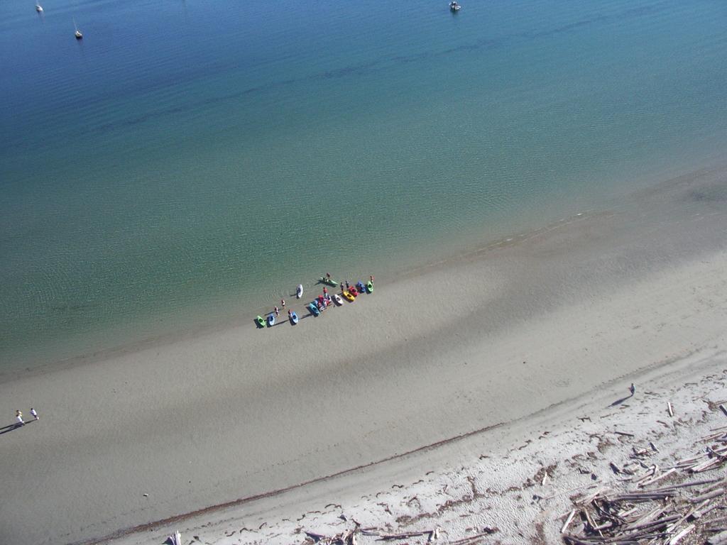 Пляж Трибьюн Бей в Канаде, фото 8
