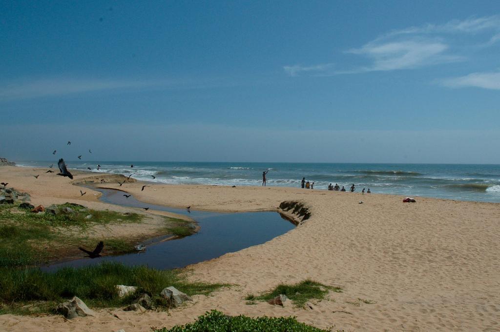 Пляж Варкала в Индии, фото 4