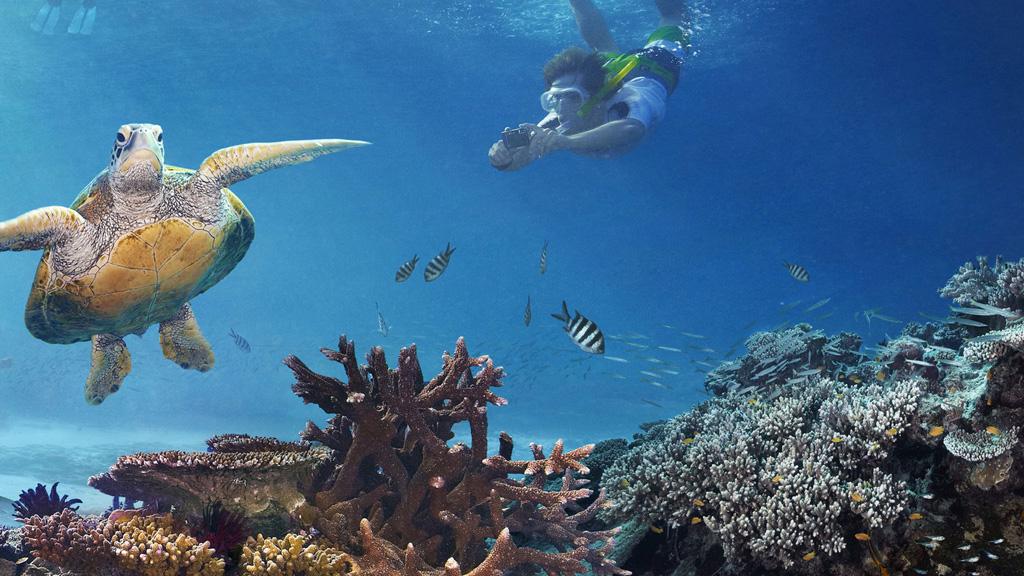 Пляж Большой Барьерный Риф в Австралии, фото 2