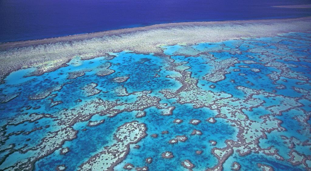 Пляж Большой Барьерный Риф в Австралии, фото 8