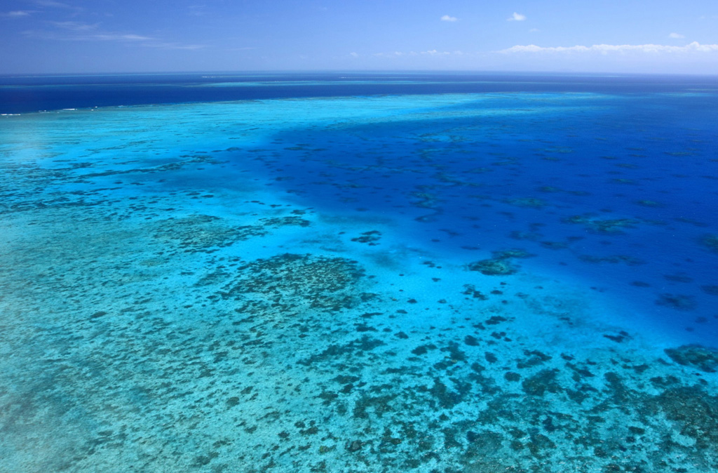 Пляж Большой Барьерный Риф в Австралии, фото 9