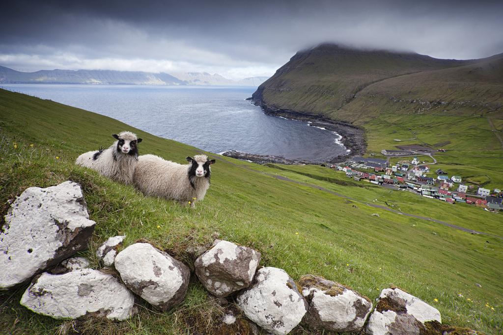 Пляж Фареры на Фарерских островах, фото 13