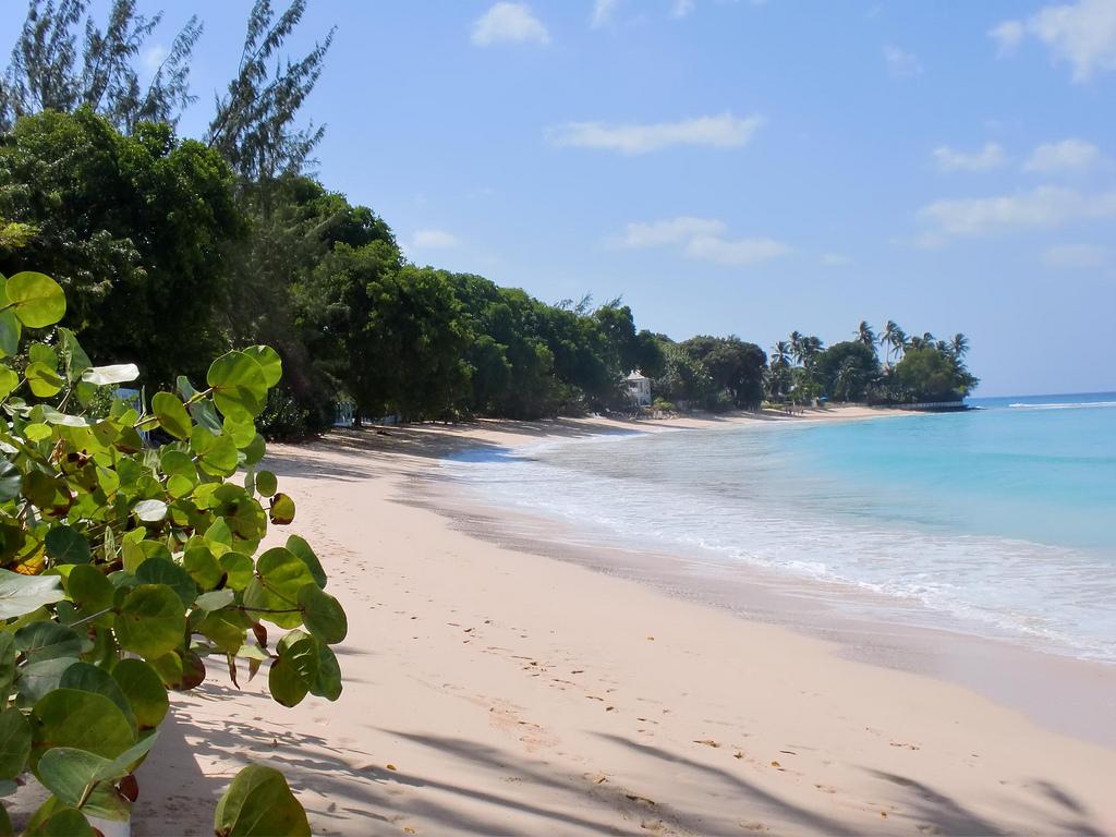 Нудизм Дети  12 Пляж Маллинс в Барбадосе, фото 1