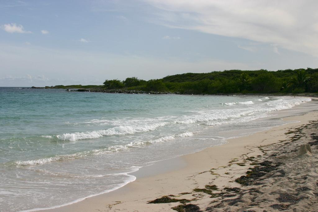 Пляж острова Вьекес в Пуэрто-Рико, фото 4