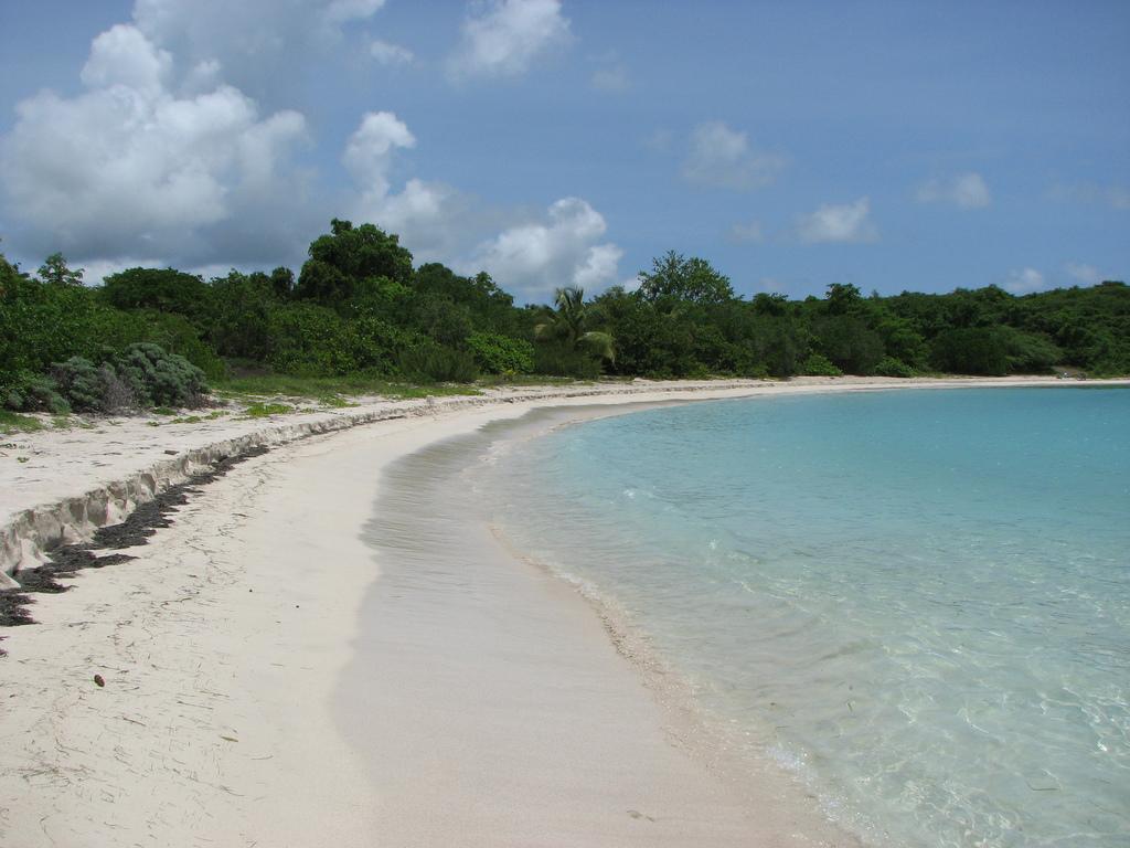 Пляж острова Вьекес в Пуэрто-Рико, фото 5