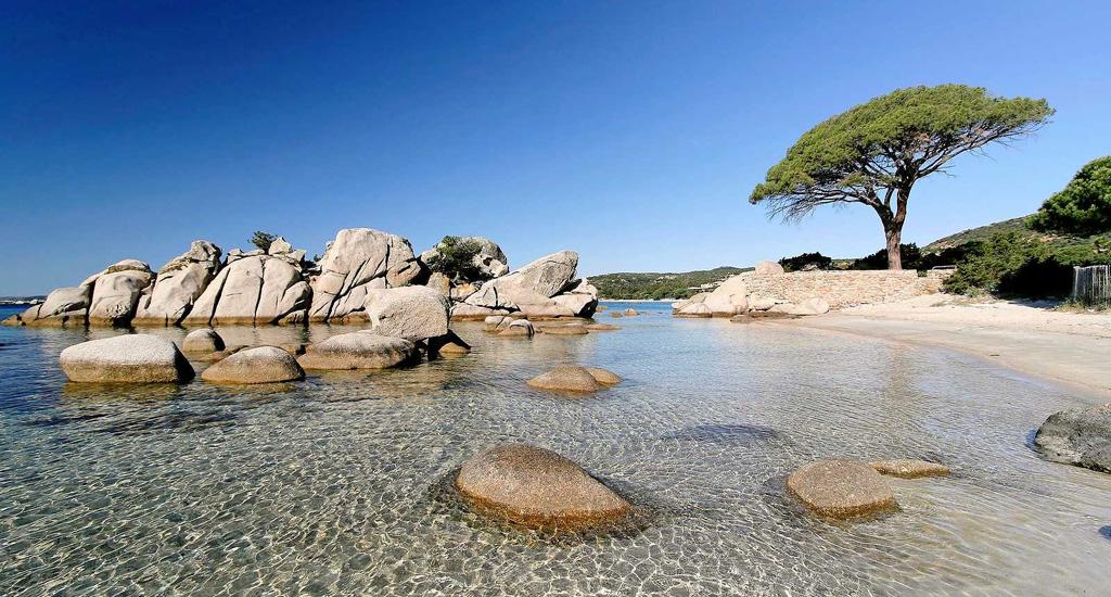 Пляж Паломбаджа во Франции, фото 1
