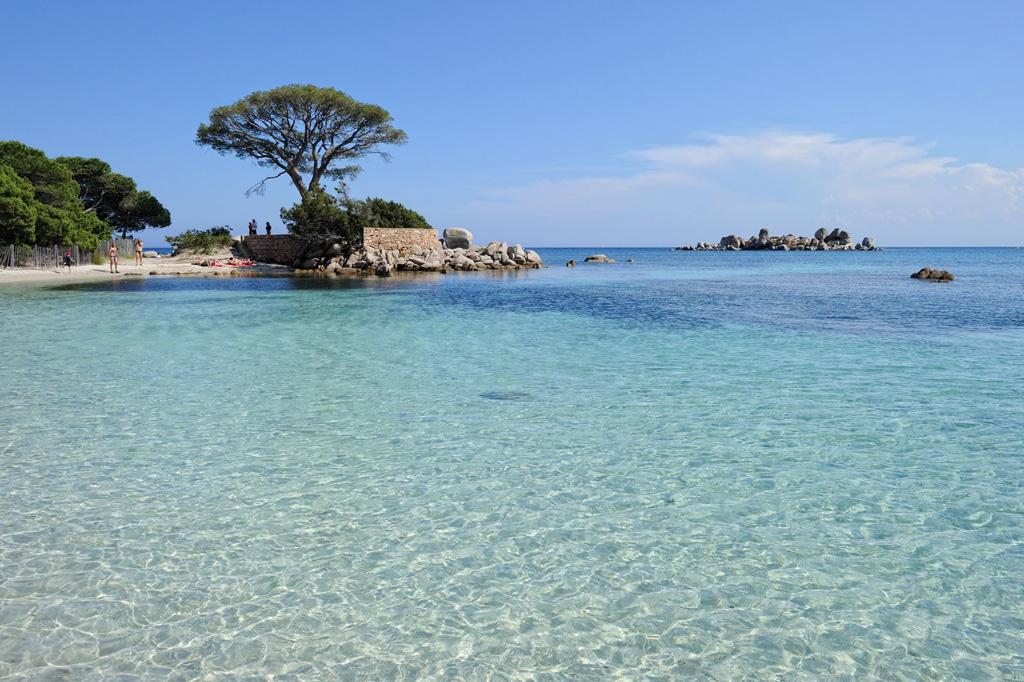 Пляж Паломбаджа во Франции, фото 5