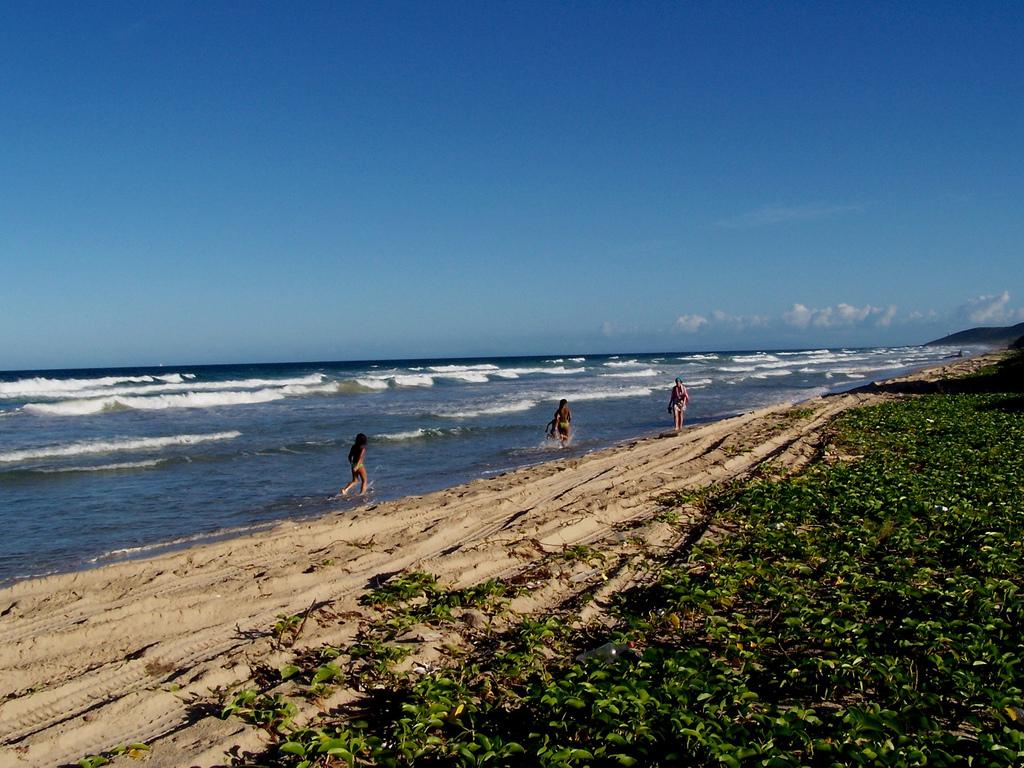 Пляж Плайя Гуакуко в Венесуэле, фото 4