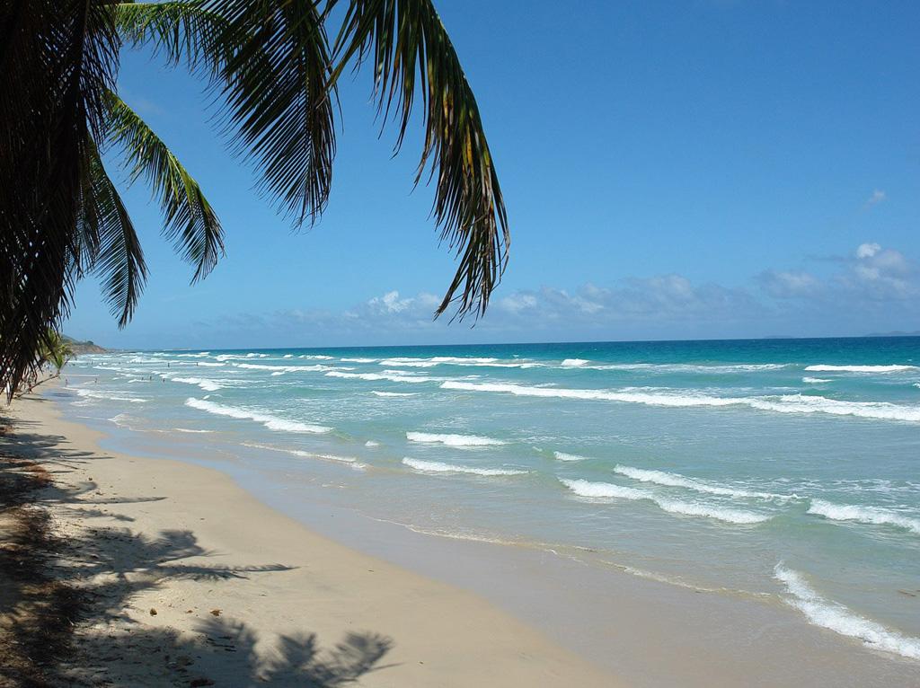 Пляж Плайя Гуакуко в Венесуэле, фото 7
