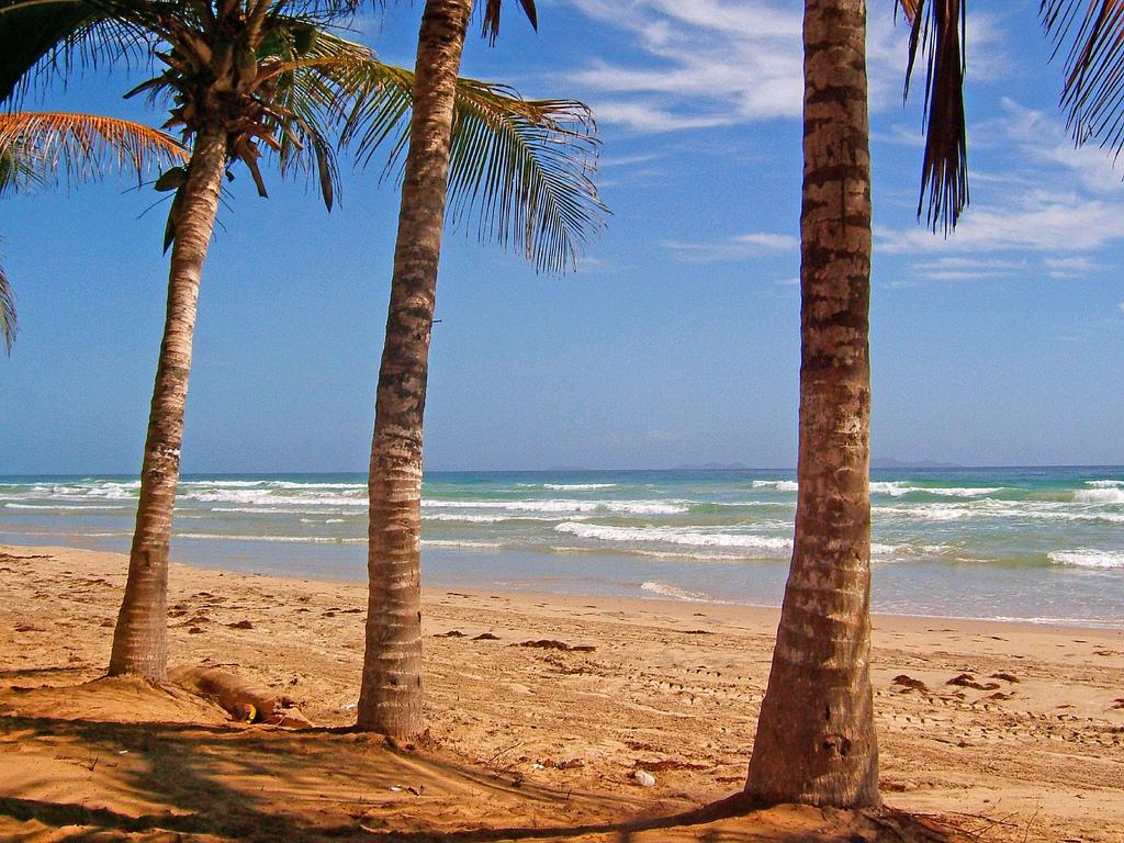 Пляж Плайя Гуакуко в Венесуэле, фото 8