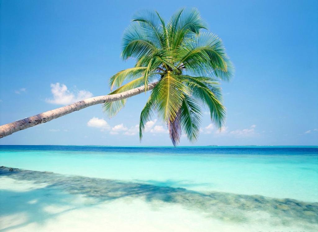 Пляж Плая-дель-Кармен в Мексике, фото 7
