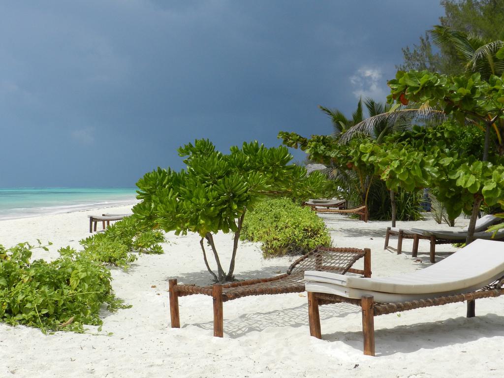 Пляж Пвани Мчангани в Занзибаре, фото 1