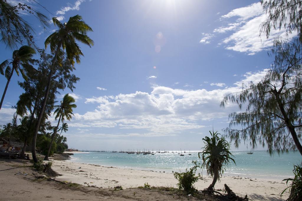 Пляж Пвани Мчангани в Занзибаре, фото 6