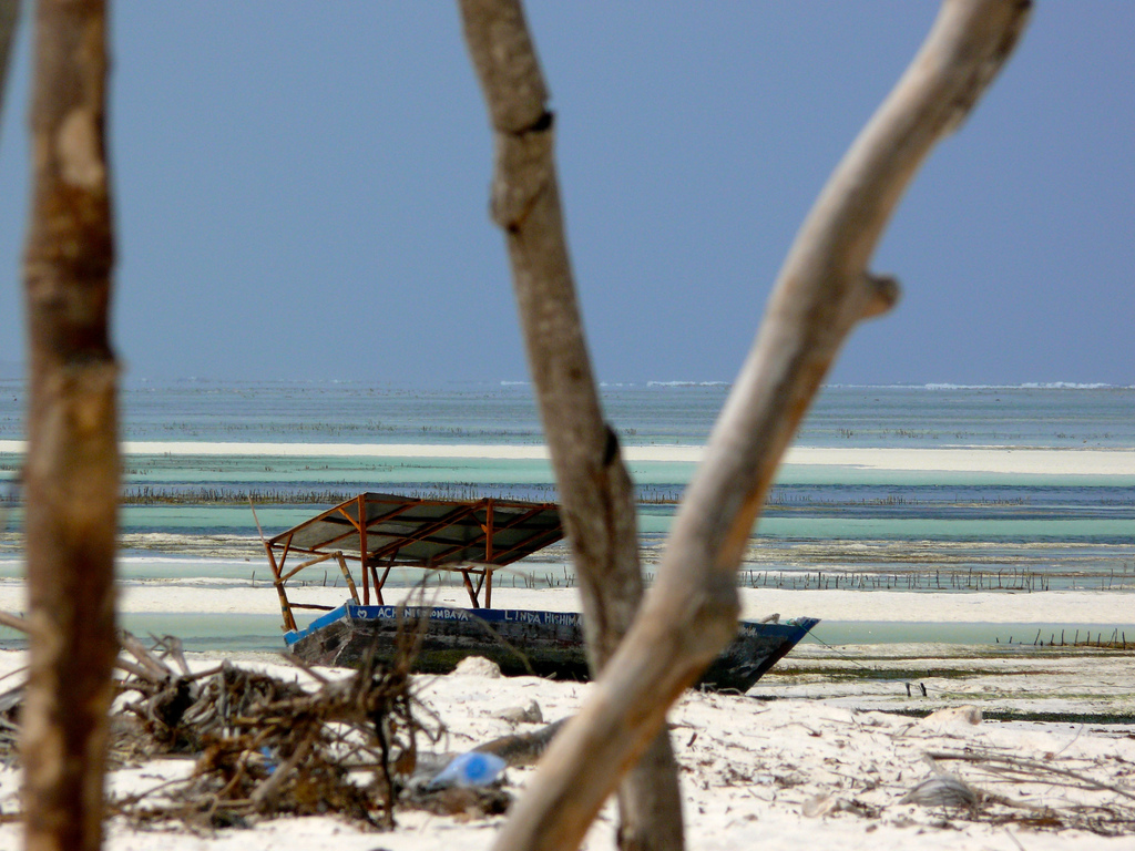 Пляж Пвани Мчангани в Занзибаре, фото 8