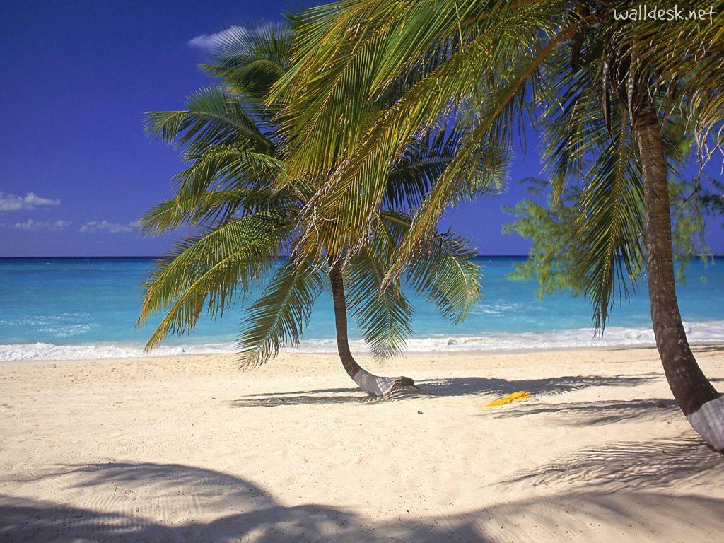 Пляж Севен Майл на Каймановых островах, фото 3