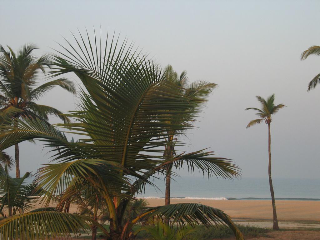 Пляж Варка в Индии, фото 4