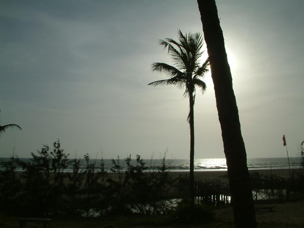 Пляж Варка в Индии, фото 5