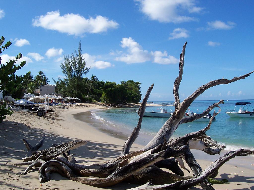 Пляж Хейвудс в Барбадосе, фото 9