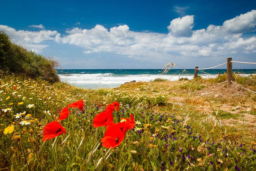 Остров Менорка в Испании, фото 7