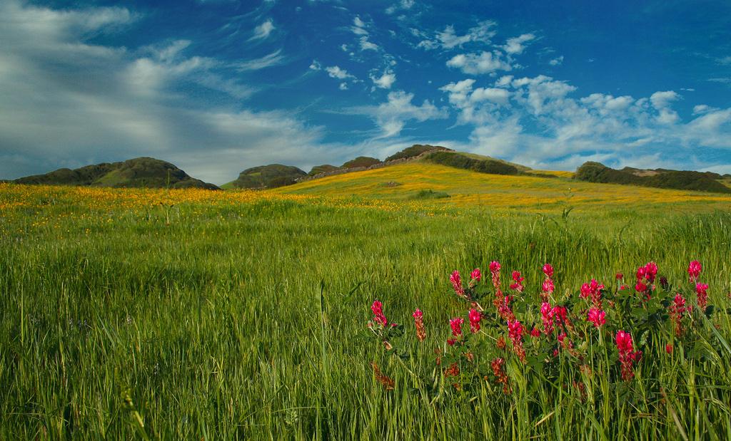 Остров Менорка в Испании, фото 17
