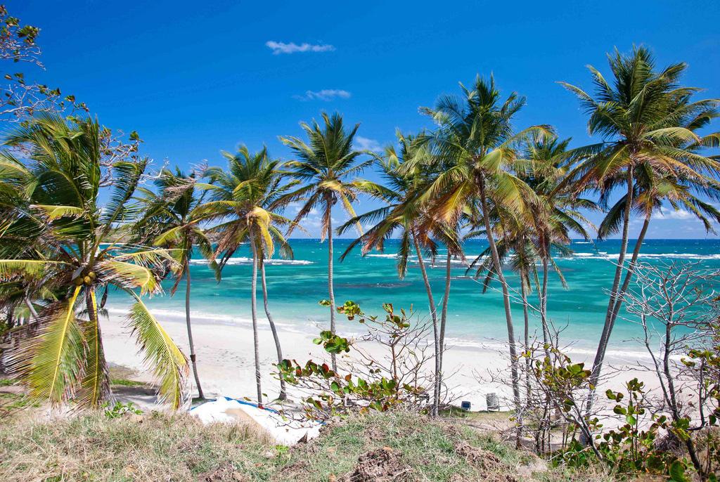 Остров Сент-Люсия на Карибах, фото 11
