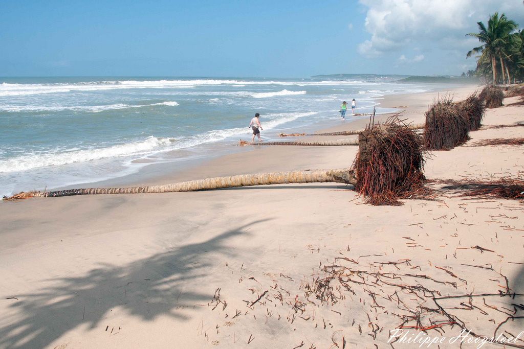 Пляж Аномабо в Гане, фото 1