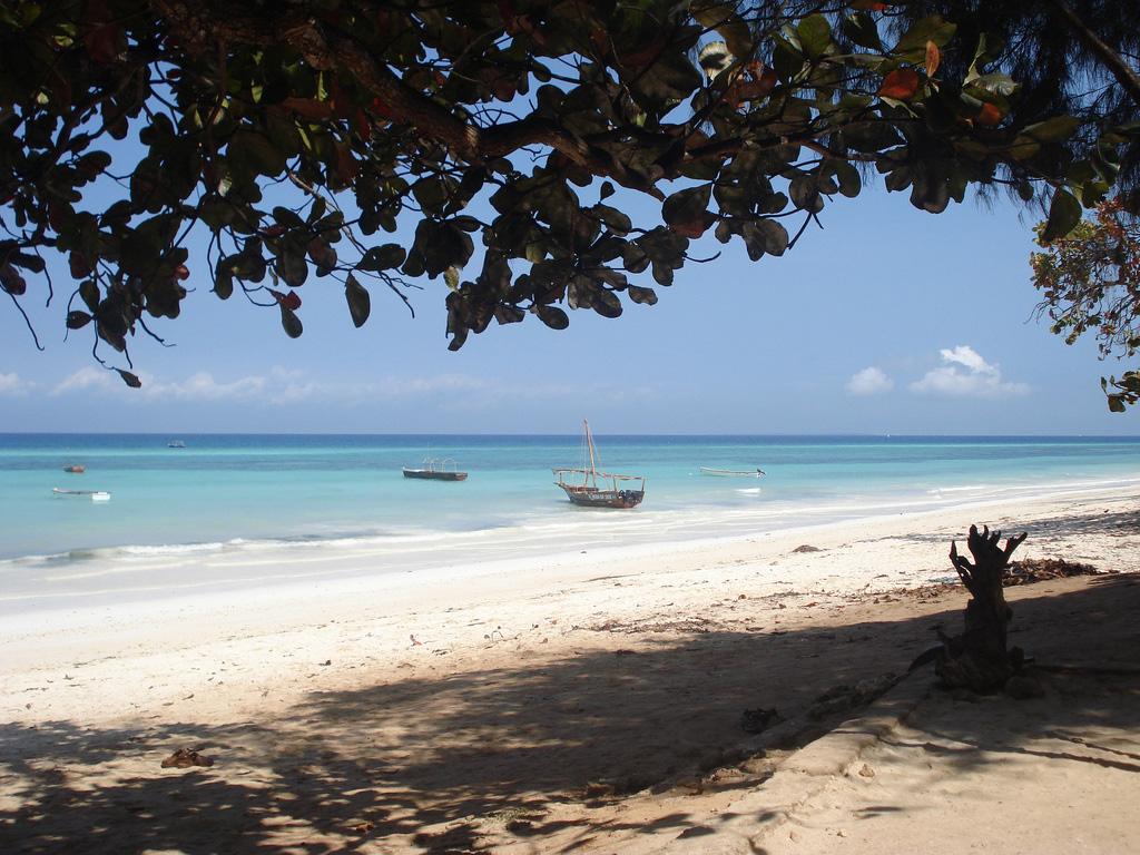 Пляж Кизимкази в Занзибаре, фото 4