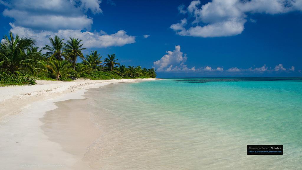 Пляж Марие Галанте в Гваделупе, фото 2