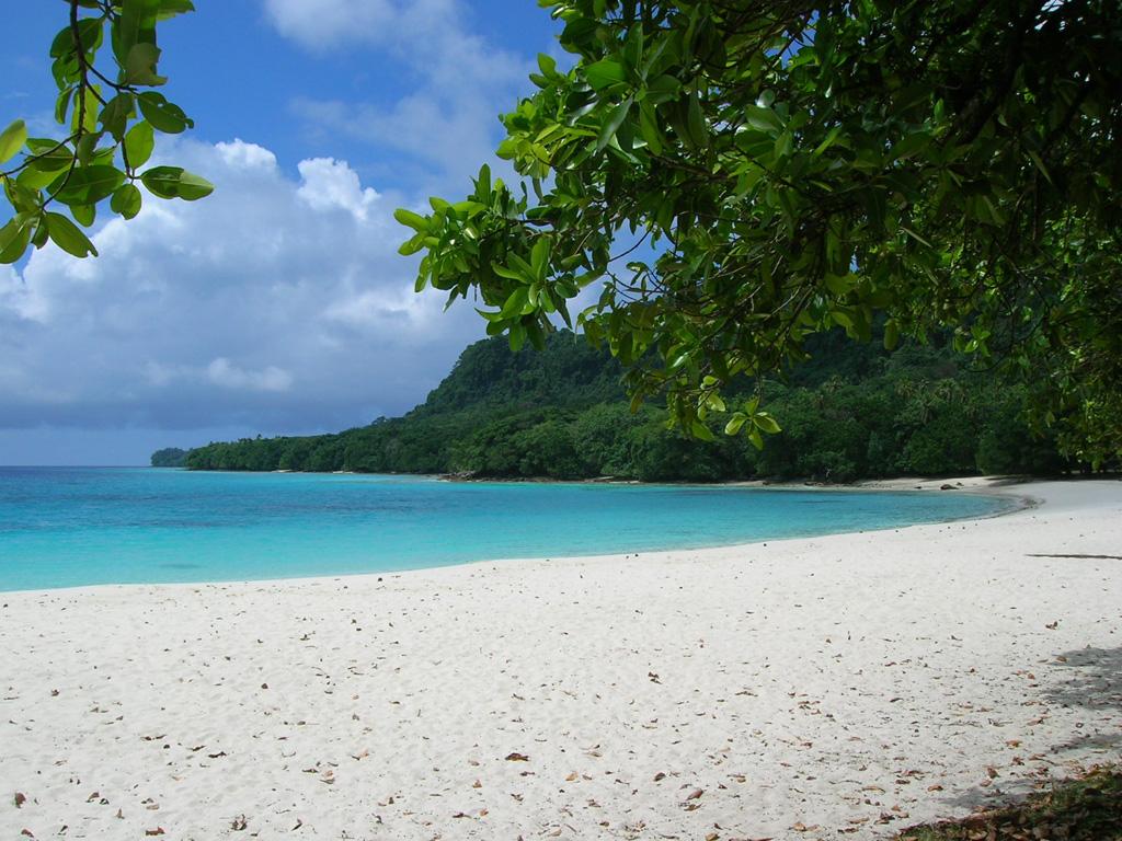 Пляж Шампань в Вануату, фото 4