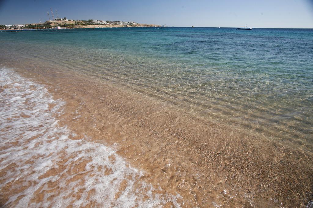 Пляж Шарм-Эль-Шейх в Египете, фото 6