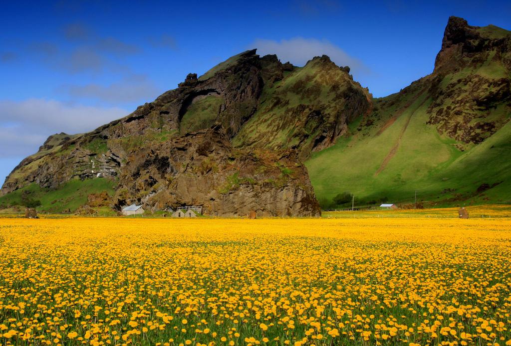 Пляж Сюдюрланд в Исландии, фото 7