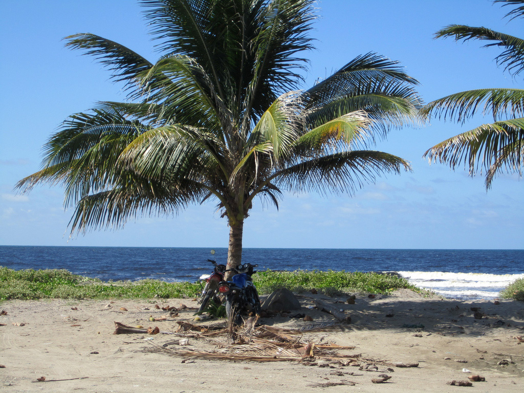 Пляж Тела в Гондурасе, фото 1